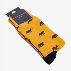 BEARS 1 PK SOCKS  YELLOW  hi-res