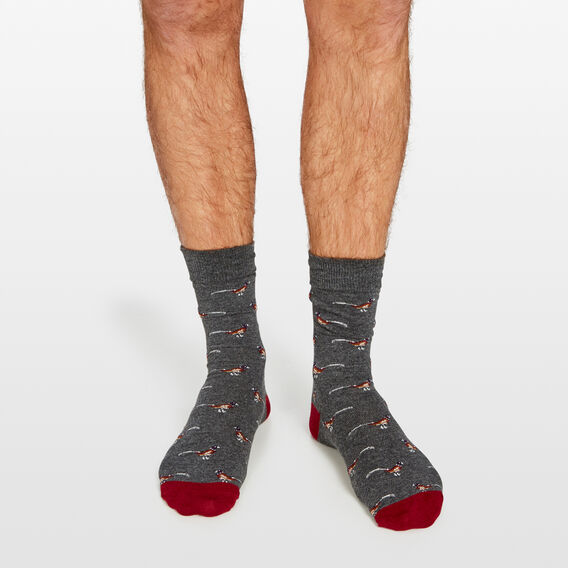 BIRDS 1 PK SOCKS  DARK CHARCOAL  hi-res