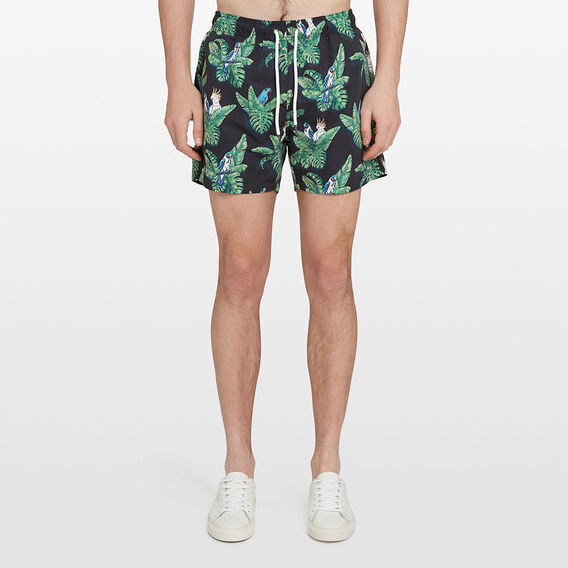 TROPICAL PARROT SWIM SHORT  MULTI  hi-res