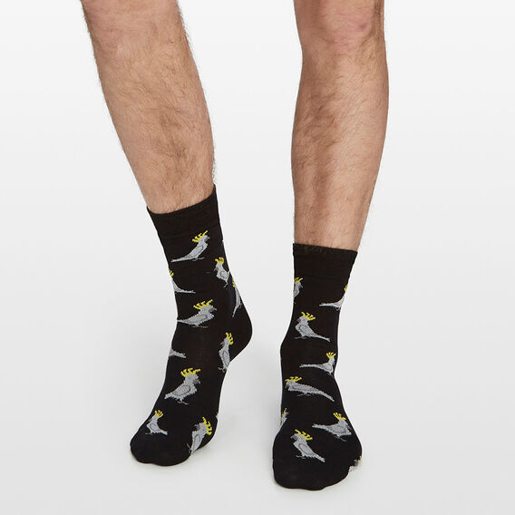 COCKATOO 1PK SOCKS  BLACK  hi-res