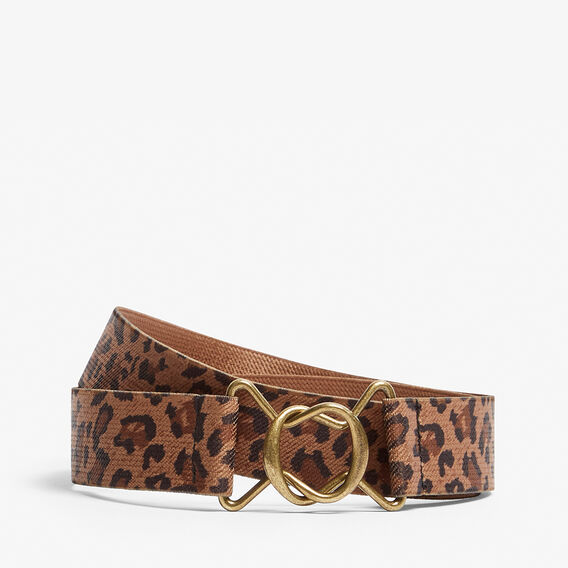ANIMAL ELASTIC BELT  MULTI  hi-res