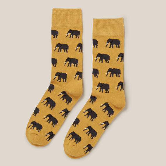 ELEPHANT 1PK SOCKS  GOLD  hi-res