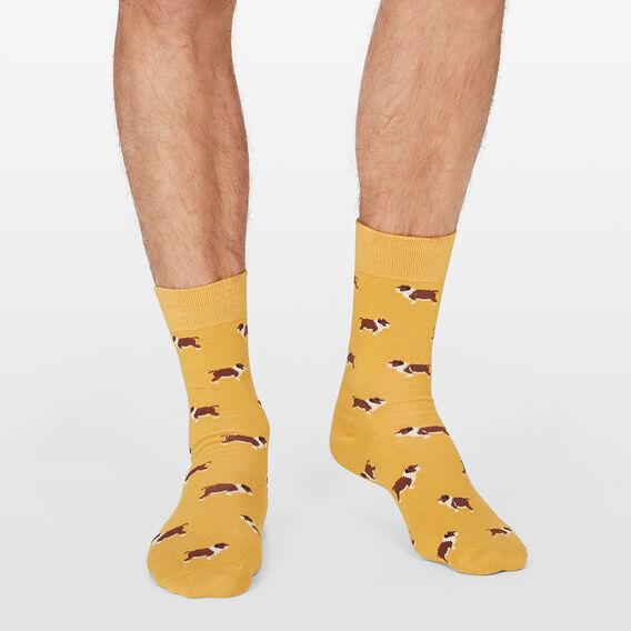 BULLDOG 1PK SOCKS  GOLD  hi-res